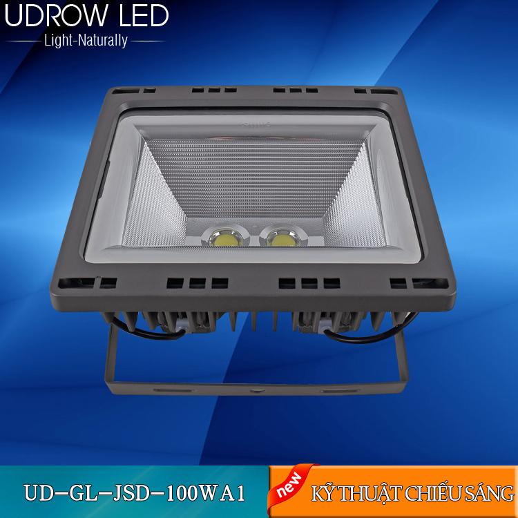 UD-Gl-FL100WA2